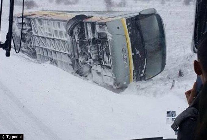 duvnoautobus3