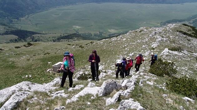 planina  5
